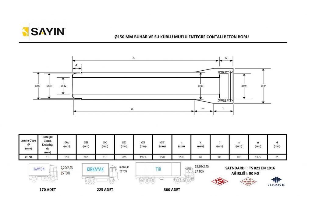Taşıma-Kapasite-Çalışması_Sayfa_01-1024x729.jpg