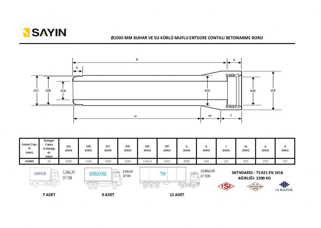 Taşıma-Kapasite-Çalışması_Sayfa_08-1024x729.jpg